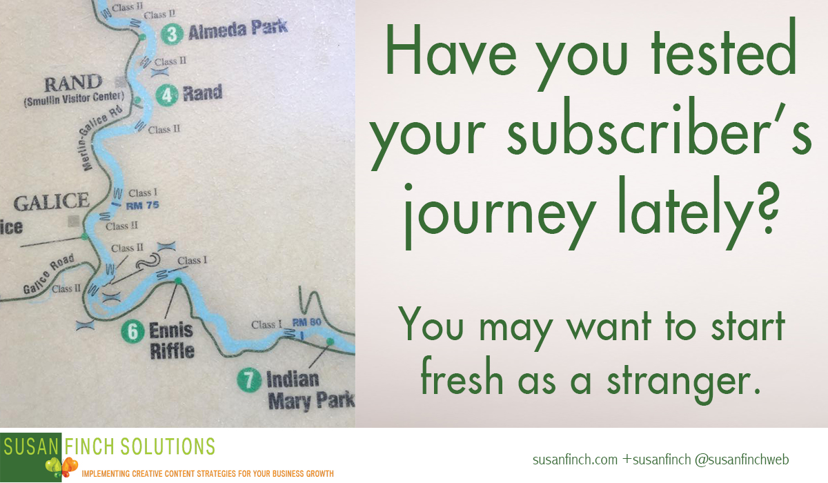 Susan Finch Solutions: The subscriber journey